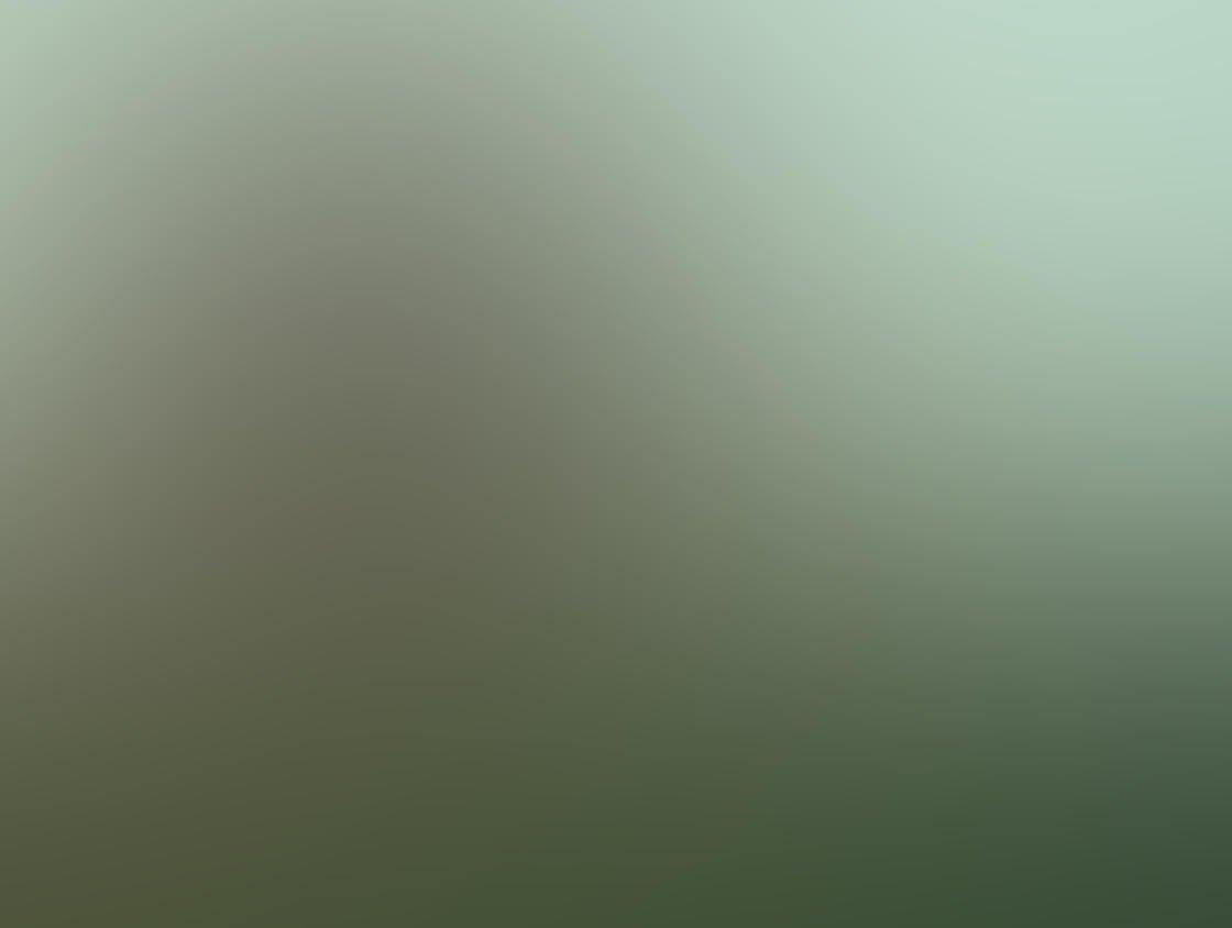 Fog & Mist iPhone Photos 22