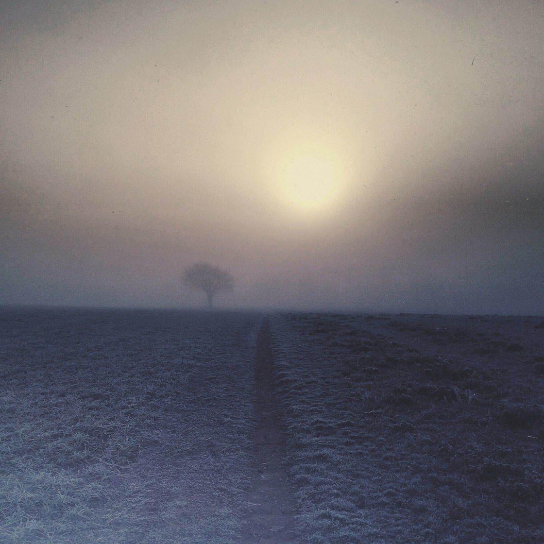 Fog & Mist iPhone Photos 24 no script
