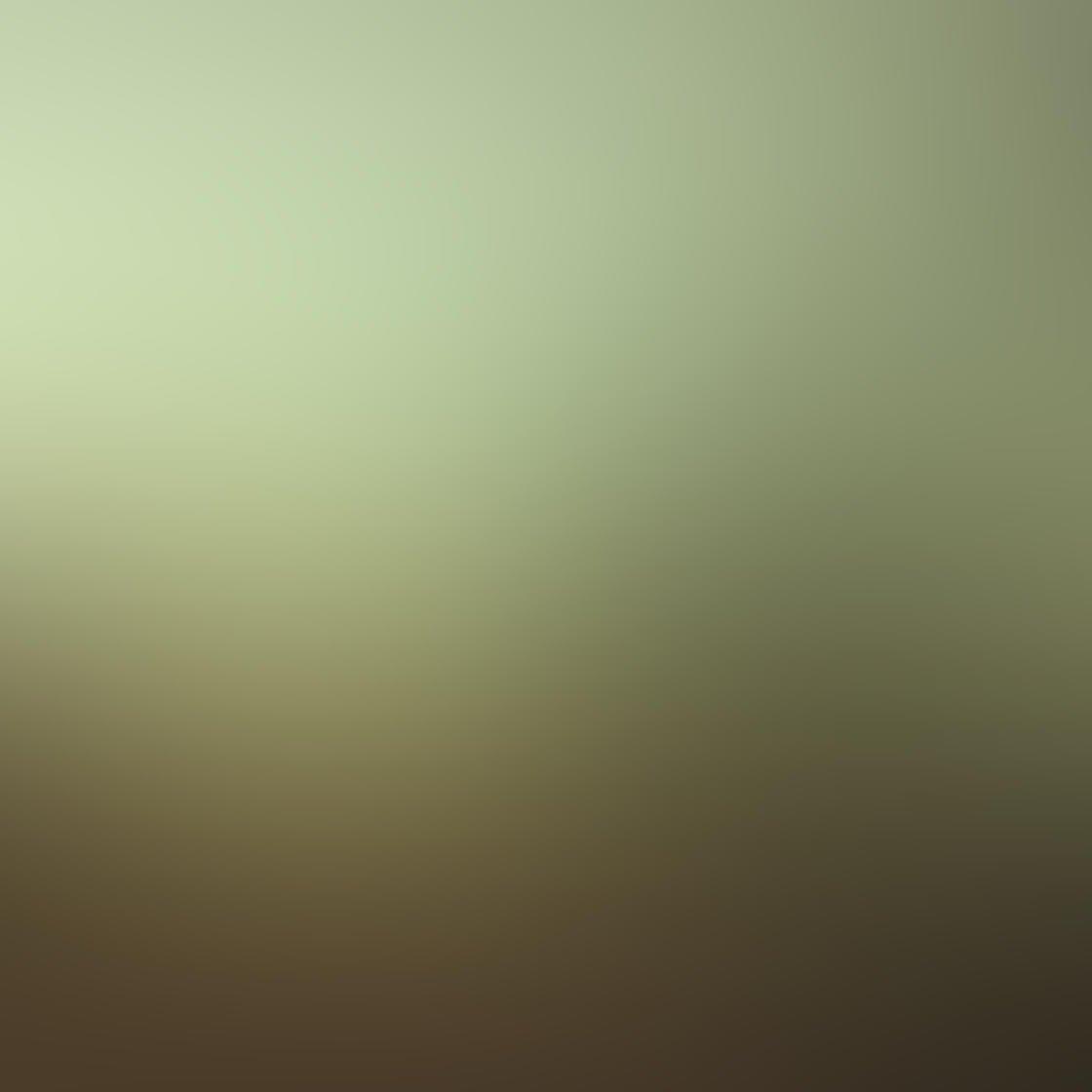 Fog & Mist iPhone Photos 46