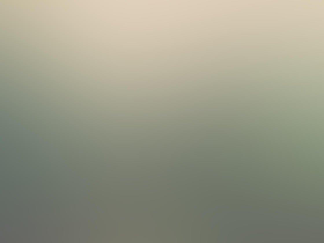 Fog & Mist iPhone Photos 30