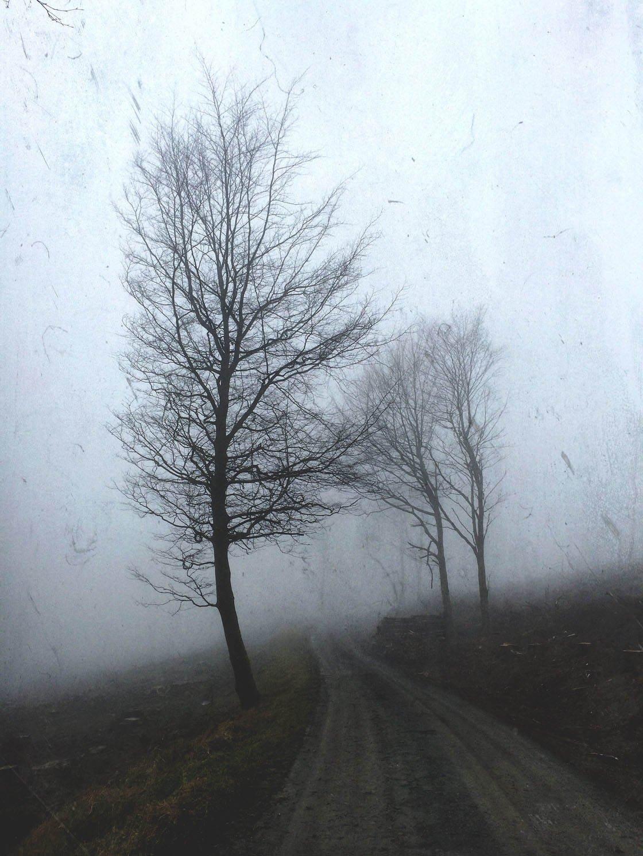 Fog & Mist iPhone Photos 31 no script