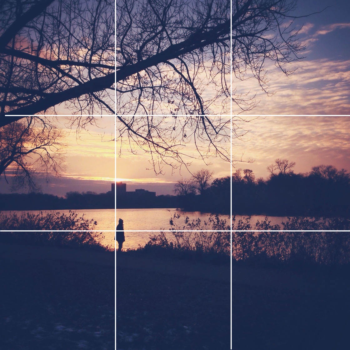 iPhone Photo Composition 16 no script