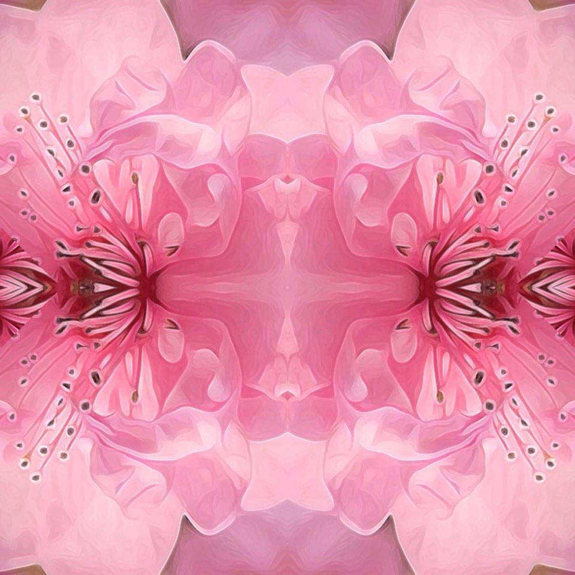 Abstract iPhone Photos 123 no script