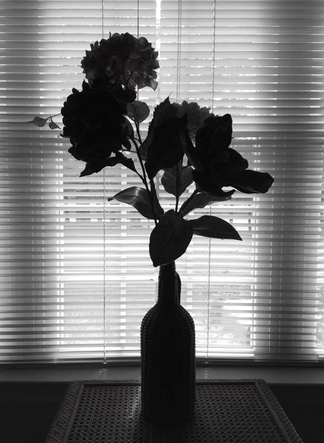 Silhouette iPhone Photos 13 no script