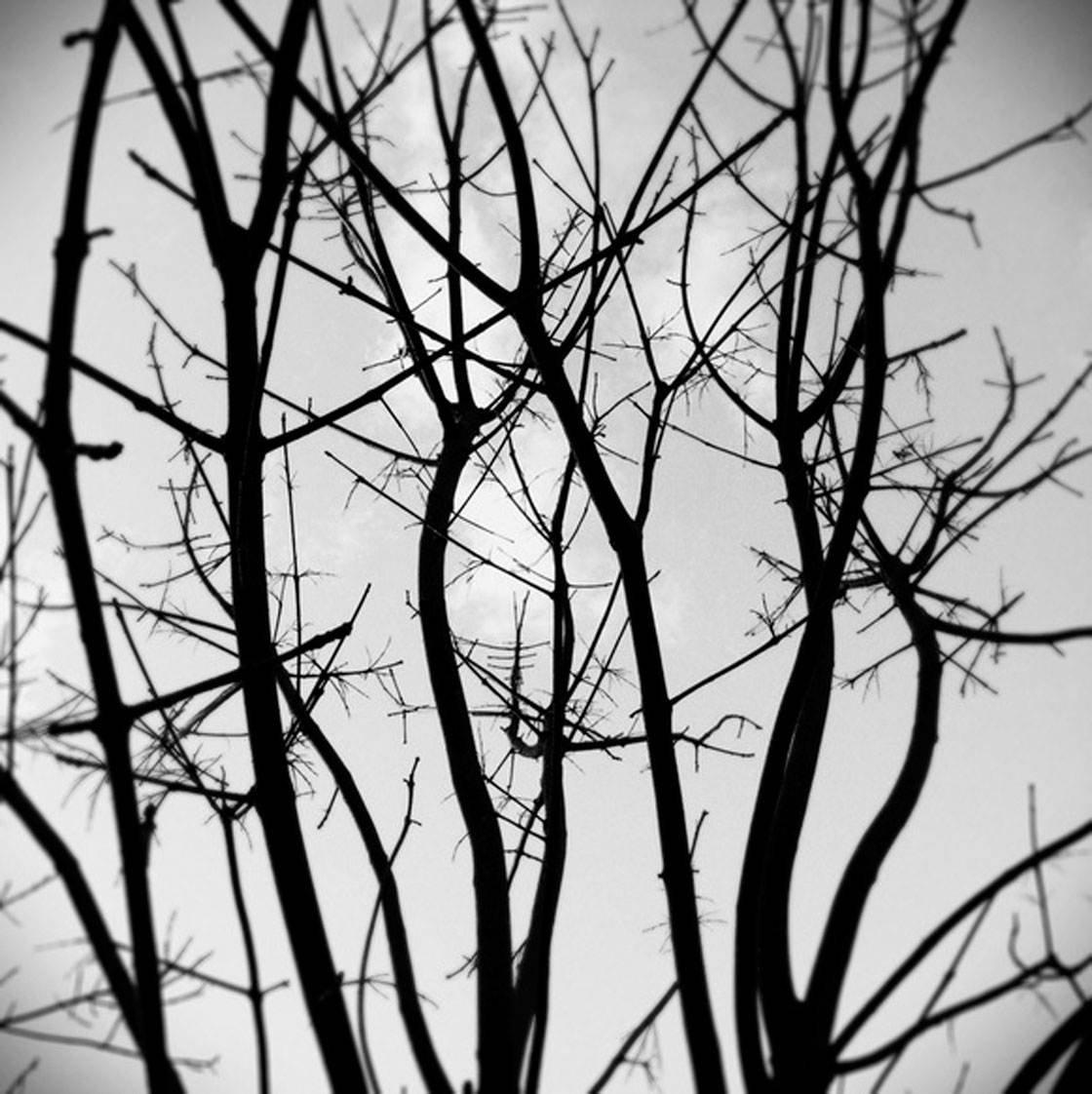 iPhone Photos Mood 18 no script