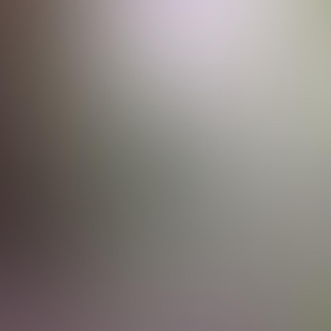 Sharp iPhone Photos 31