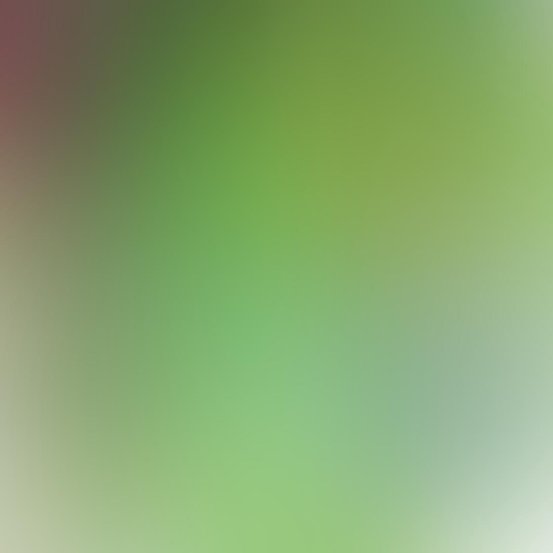 green_iphone_photos-03