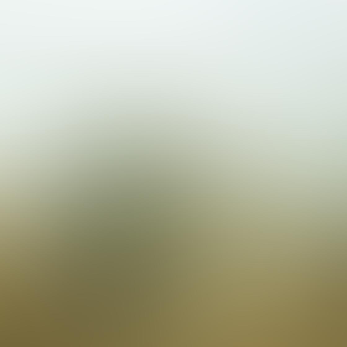 Rural Scenes-02