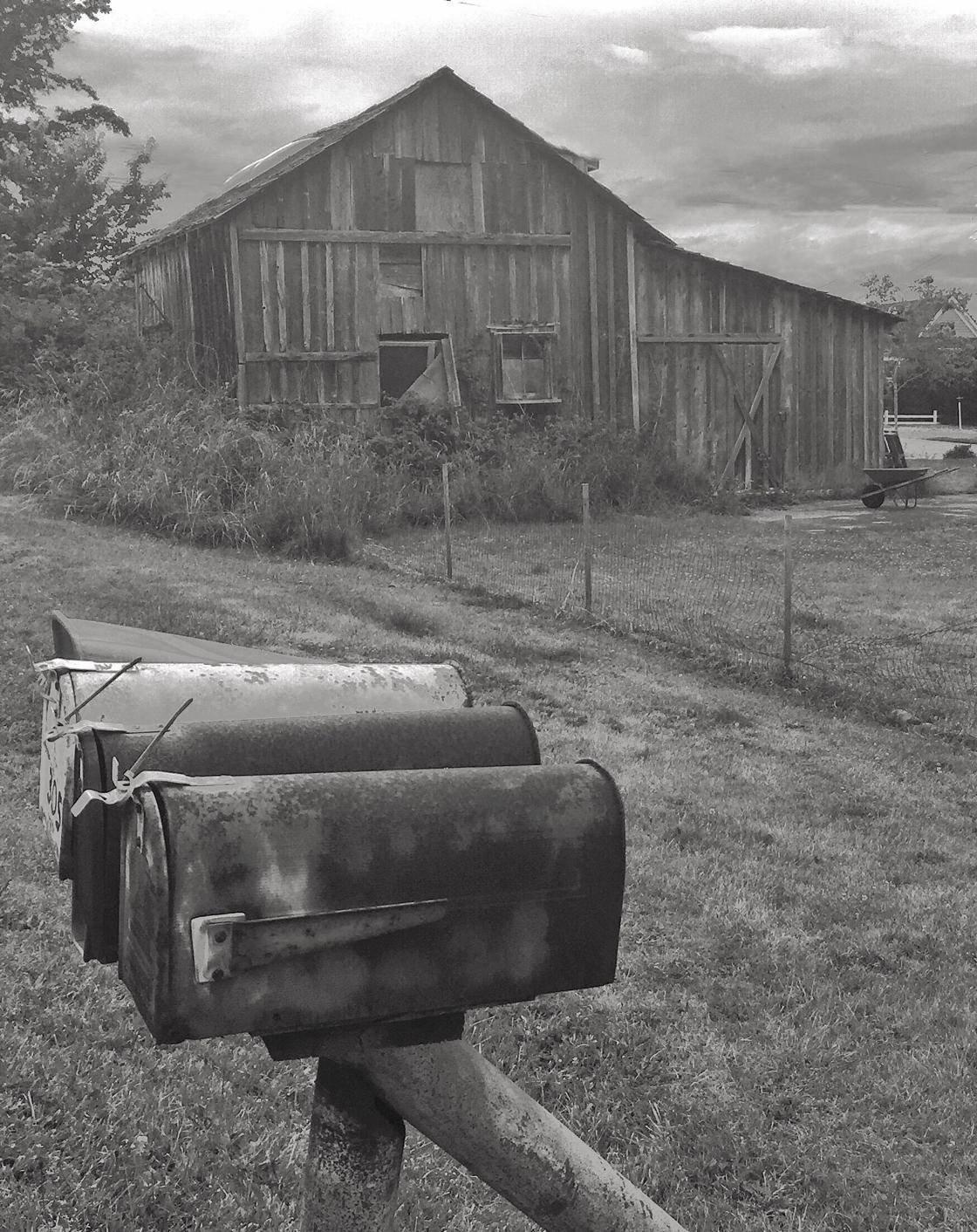 Rural Scenes-15 no script