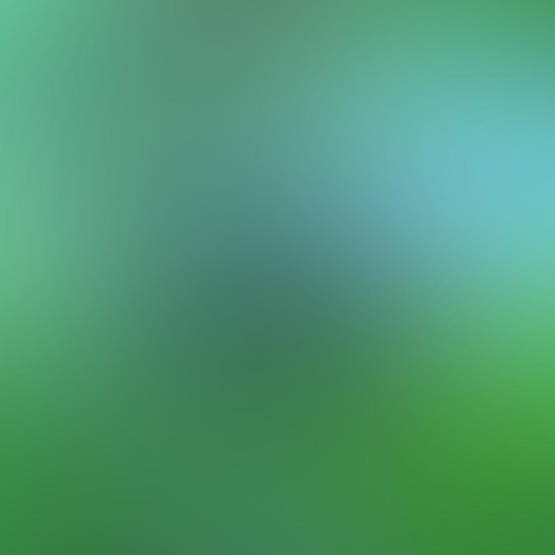 green_iphone_photos-28