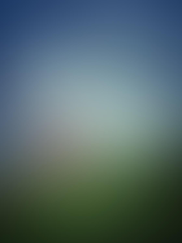 Rural Scenes-29