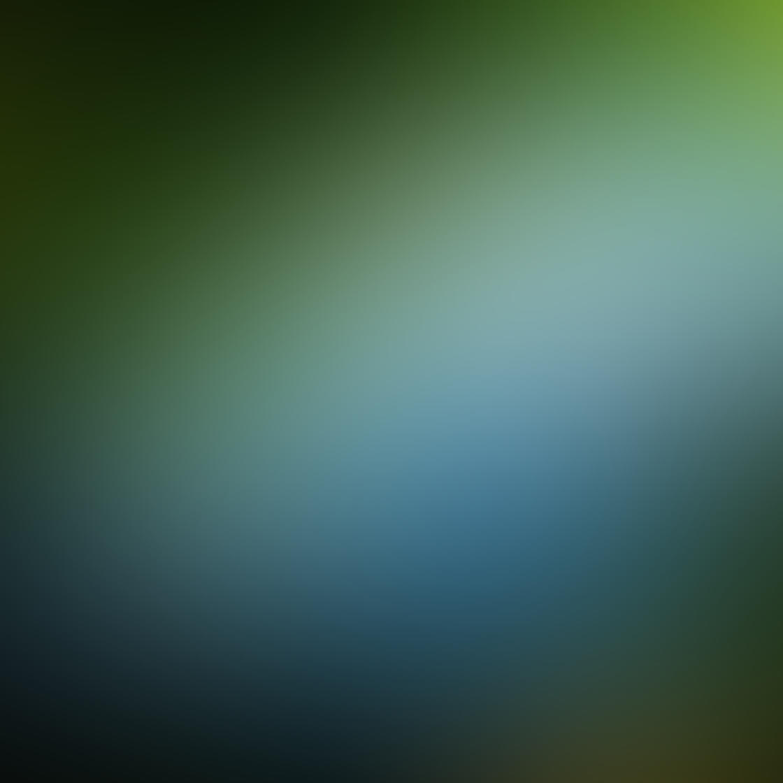Ordinary iPhone Photo Subjects 105