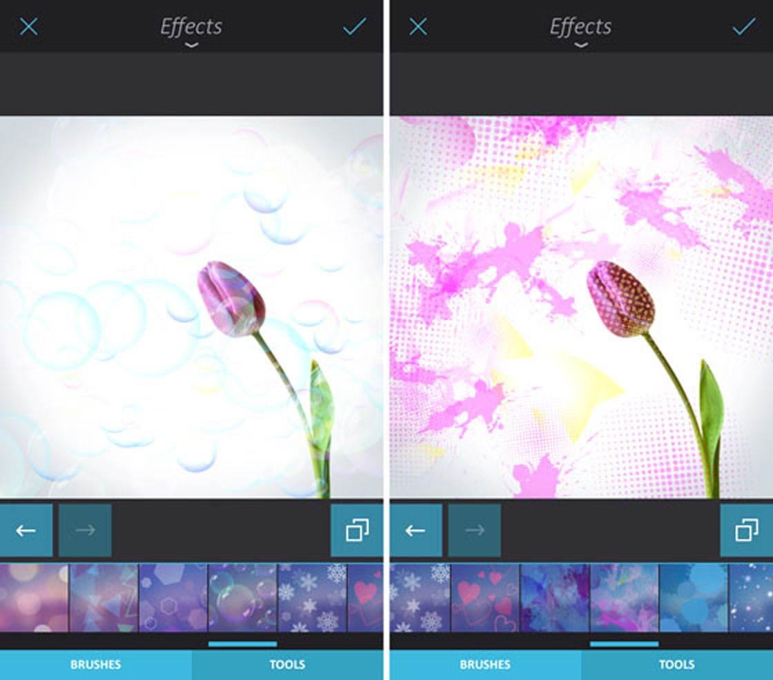 Photo Editor Apps31 no script