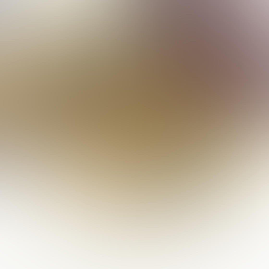 iPhone Photo Vignette 13