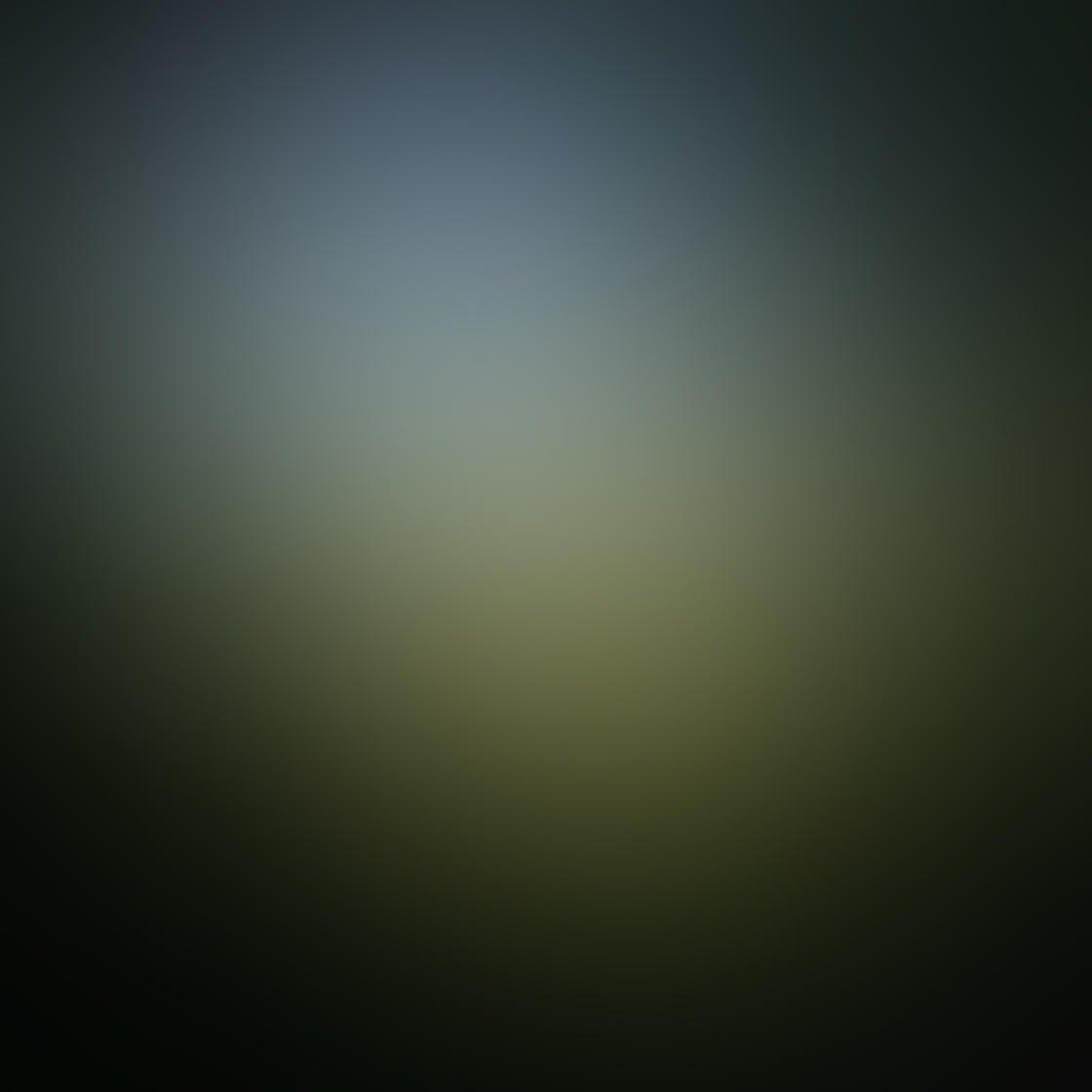 Ordinary iPhone Photo Subjects 80