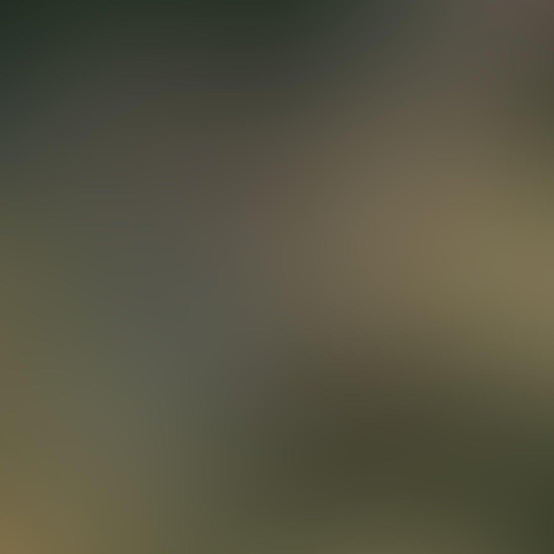 Ordinary iPhone Photo Subjects 87