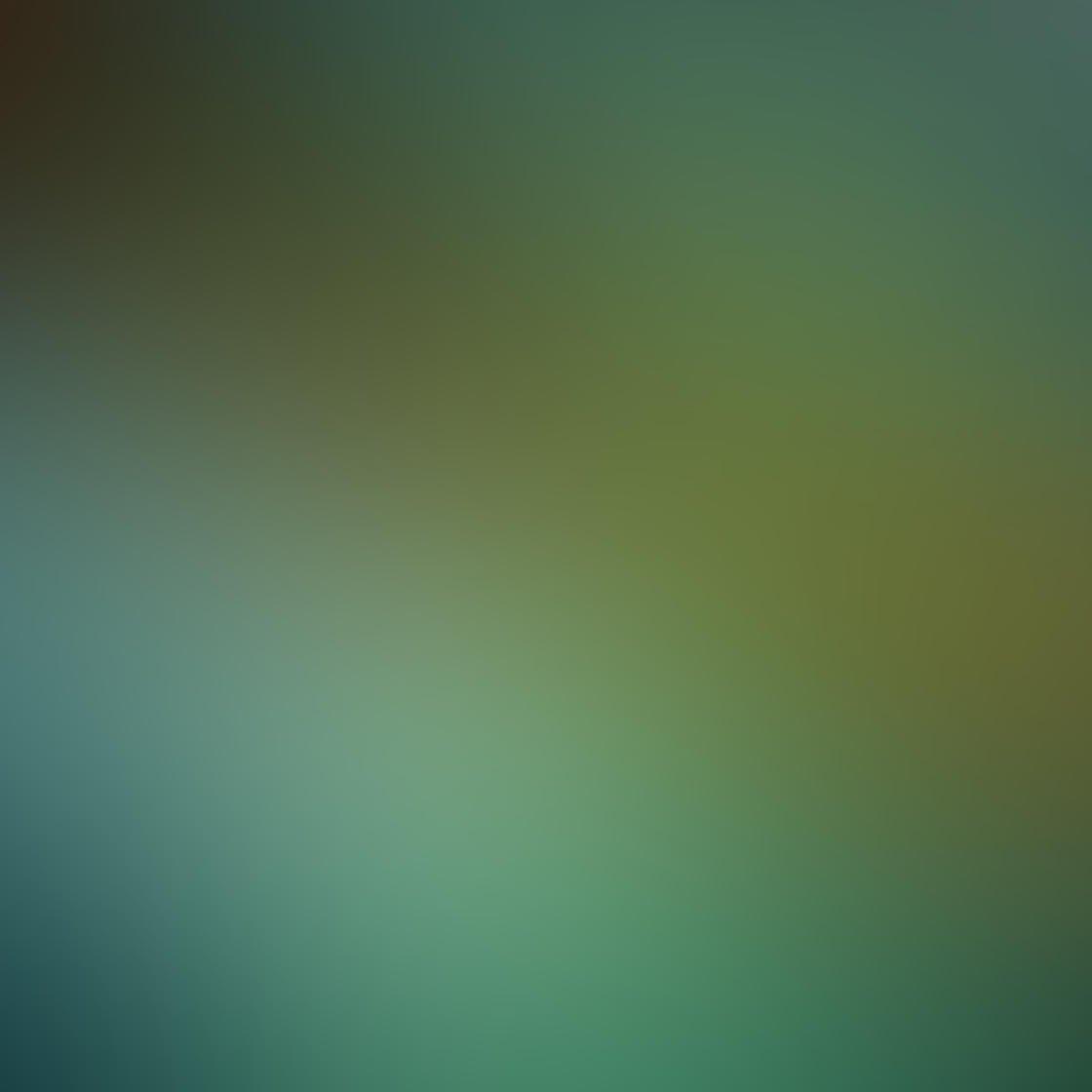 Ordinary iPhone Photo Subjects 16