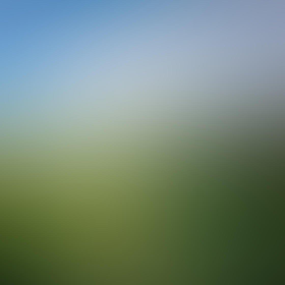 iPhone Photo Vignette 25