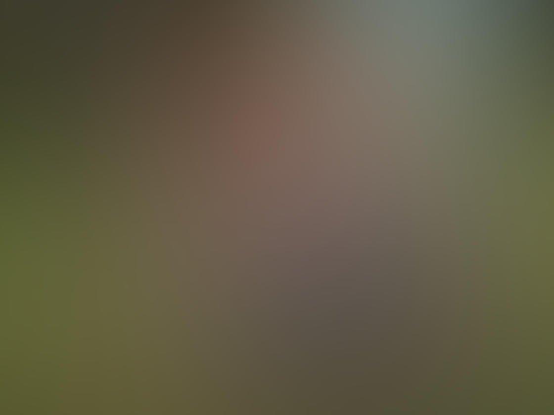 Iphone camera timer 14
