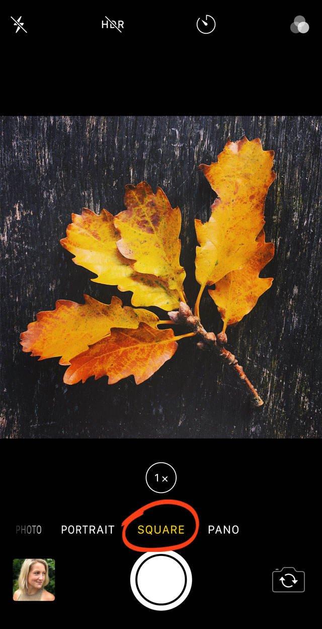 Iphone x camera features 43 no script