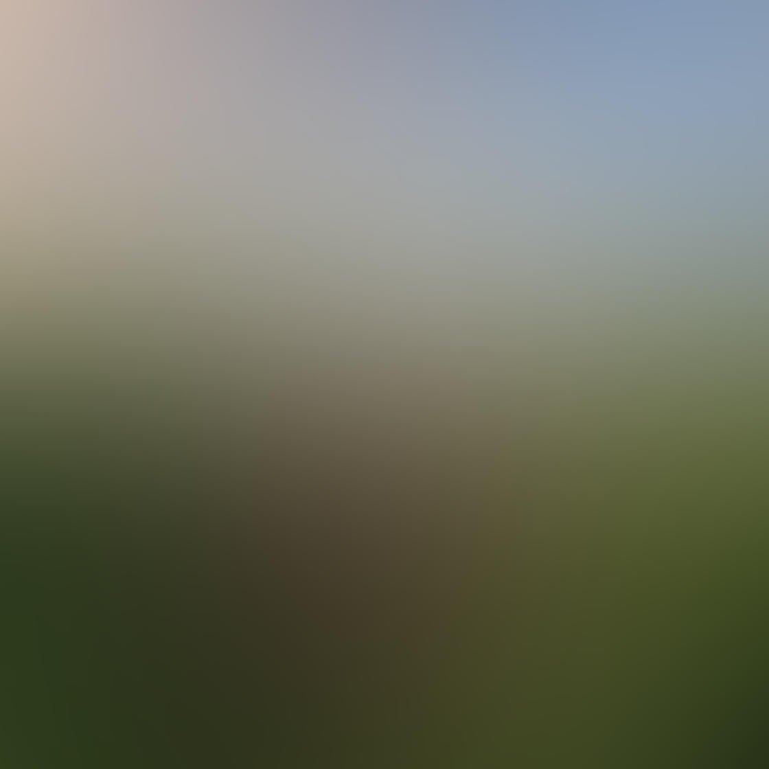 Iphone camera settings 1