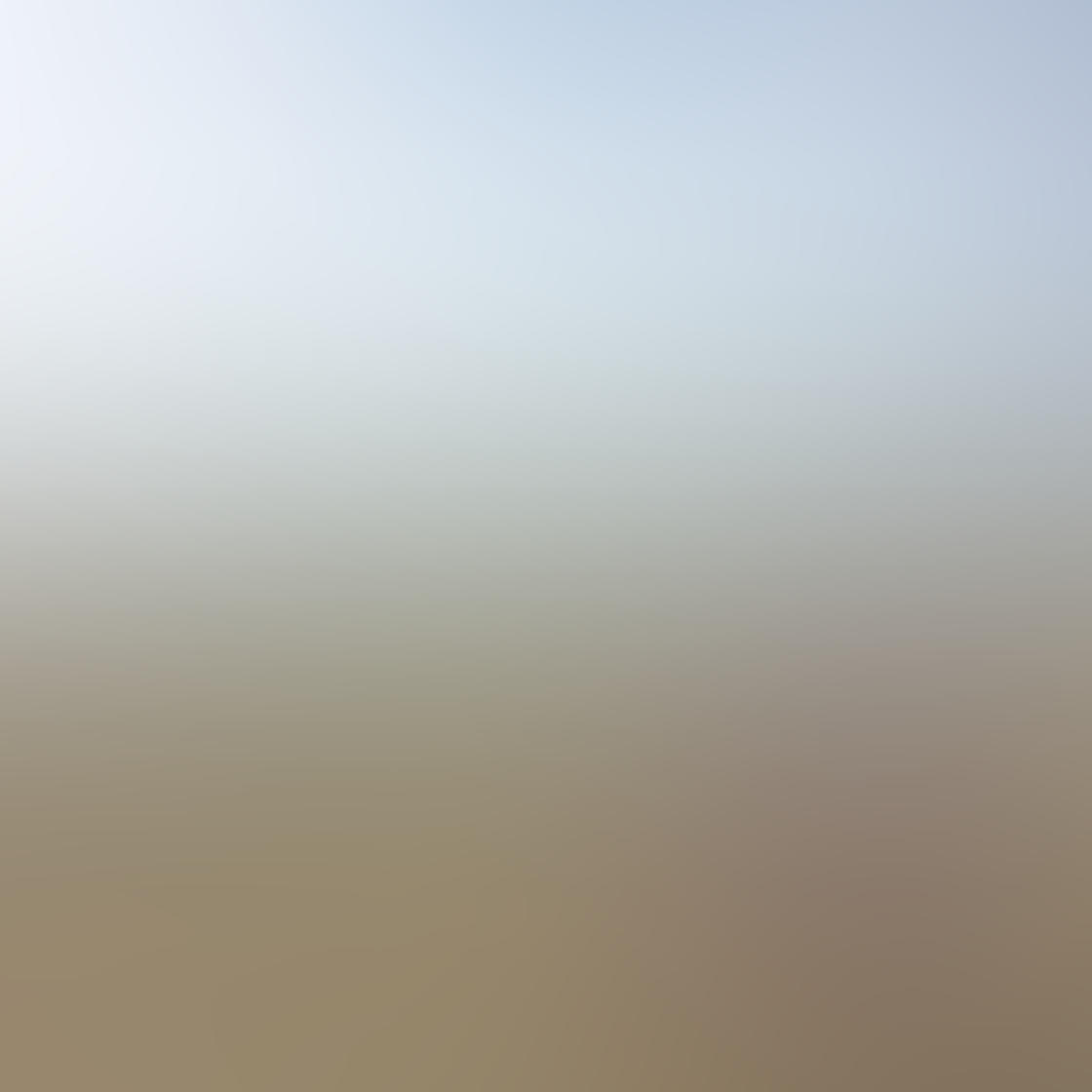 Vsco filters 26