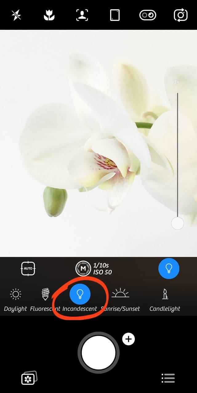 Advanced iphone camera controls 101 no script