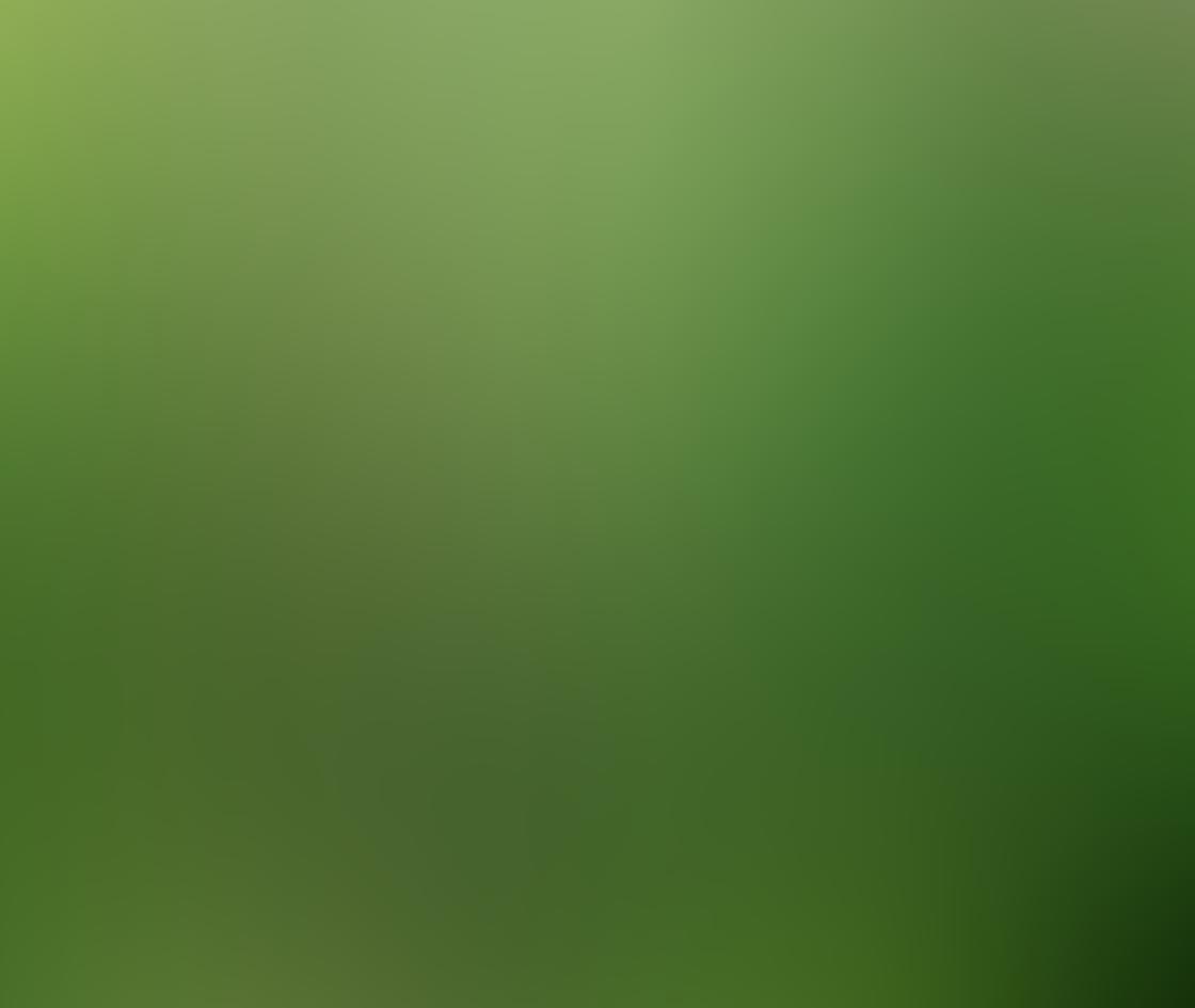 green_iphone_photos-13