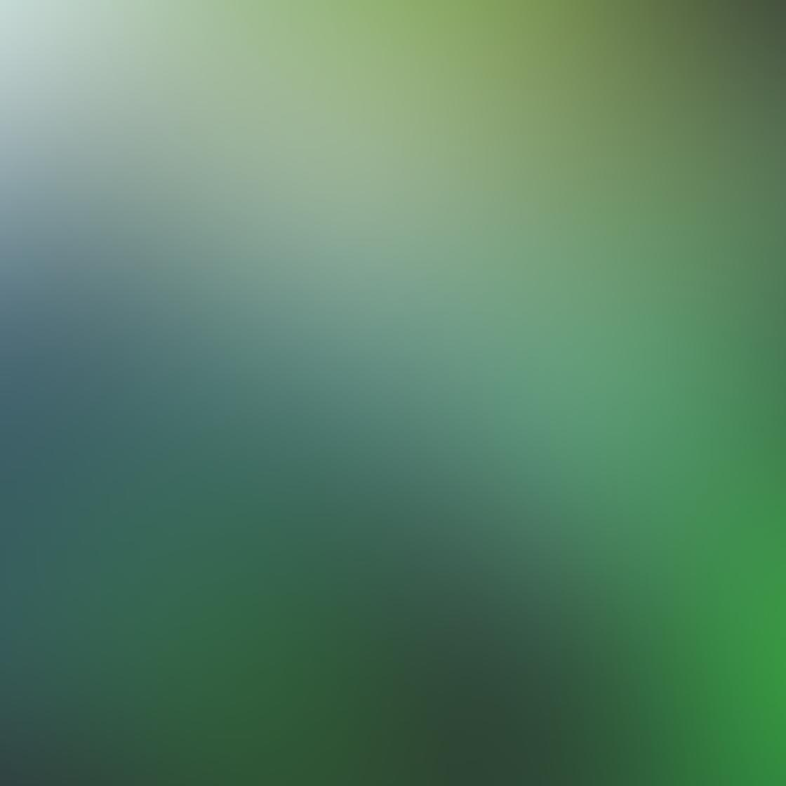 green_iphone_photos-12