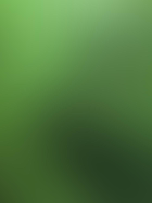 green_iphone_photos-23