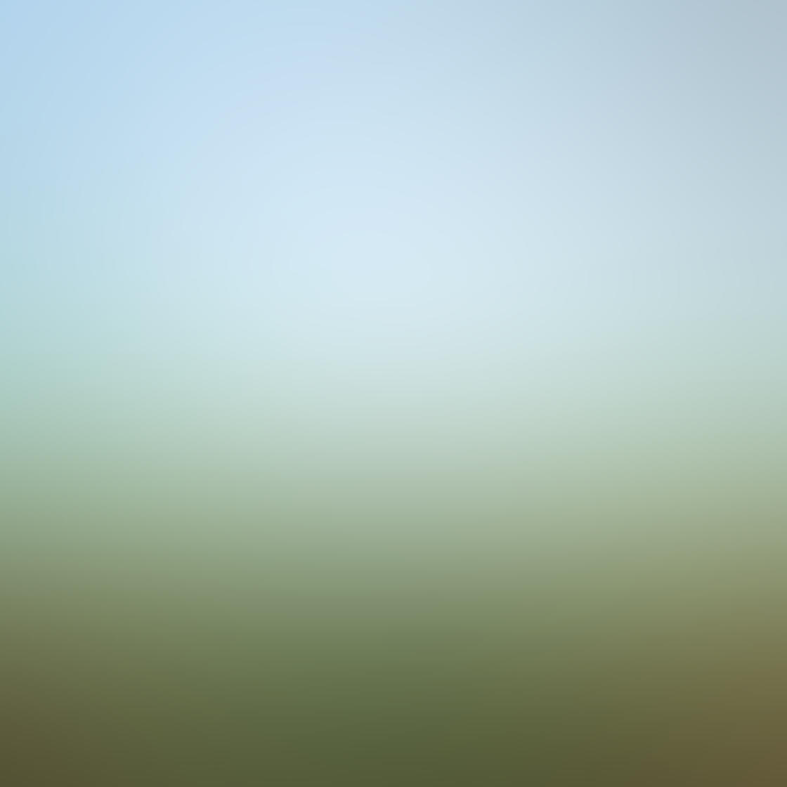 Fog & Mist iPhone Photos 8