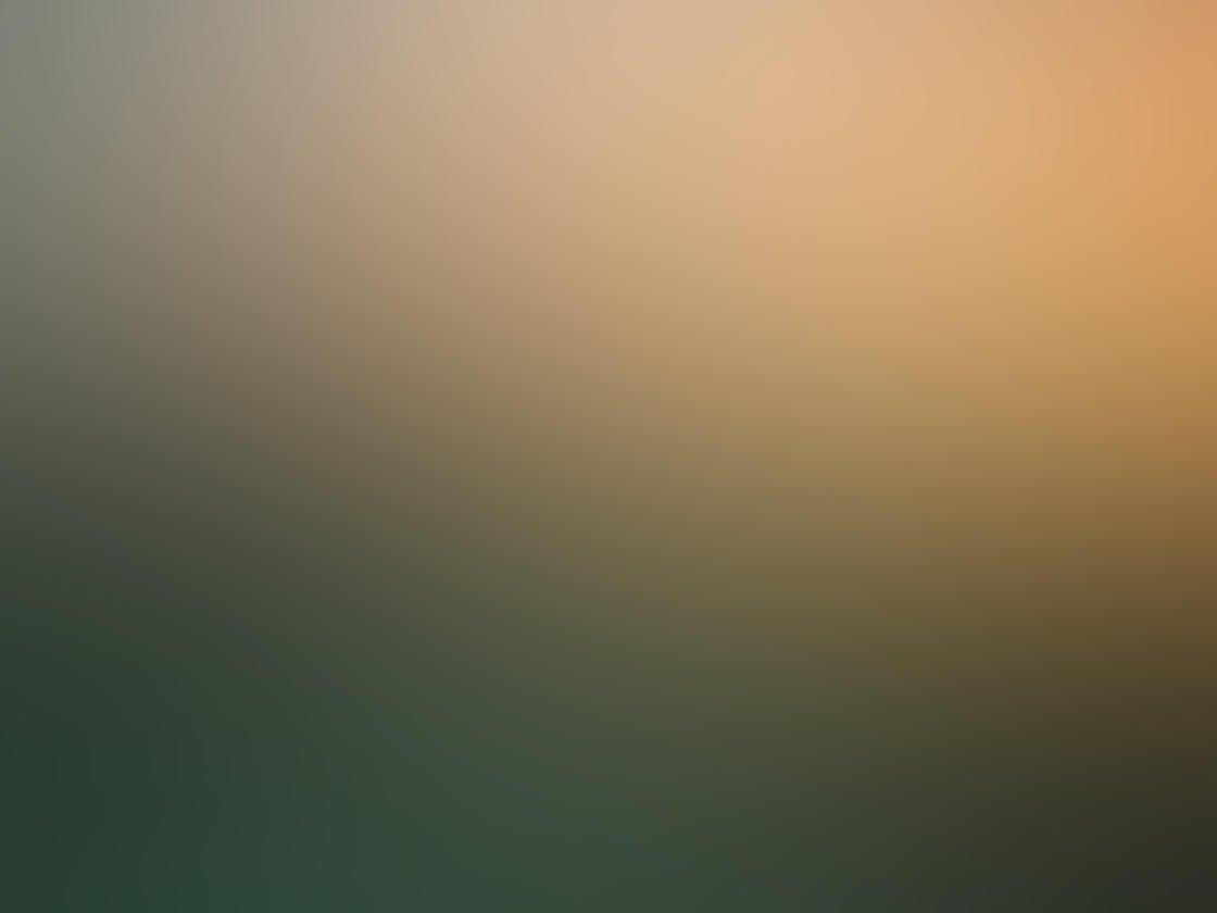 Fog & Mist iPhone Photos 33