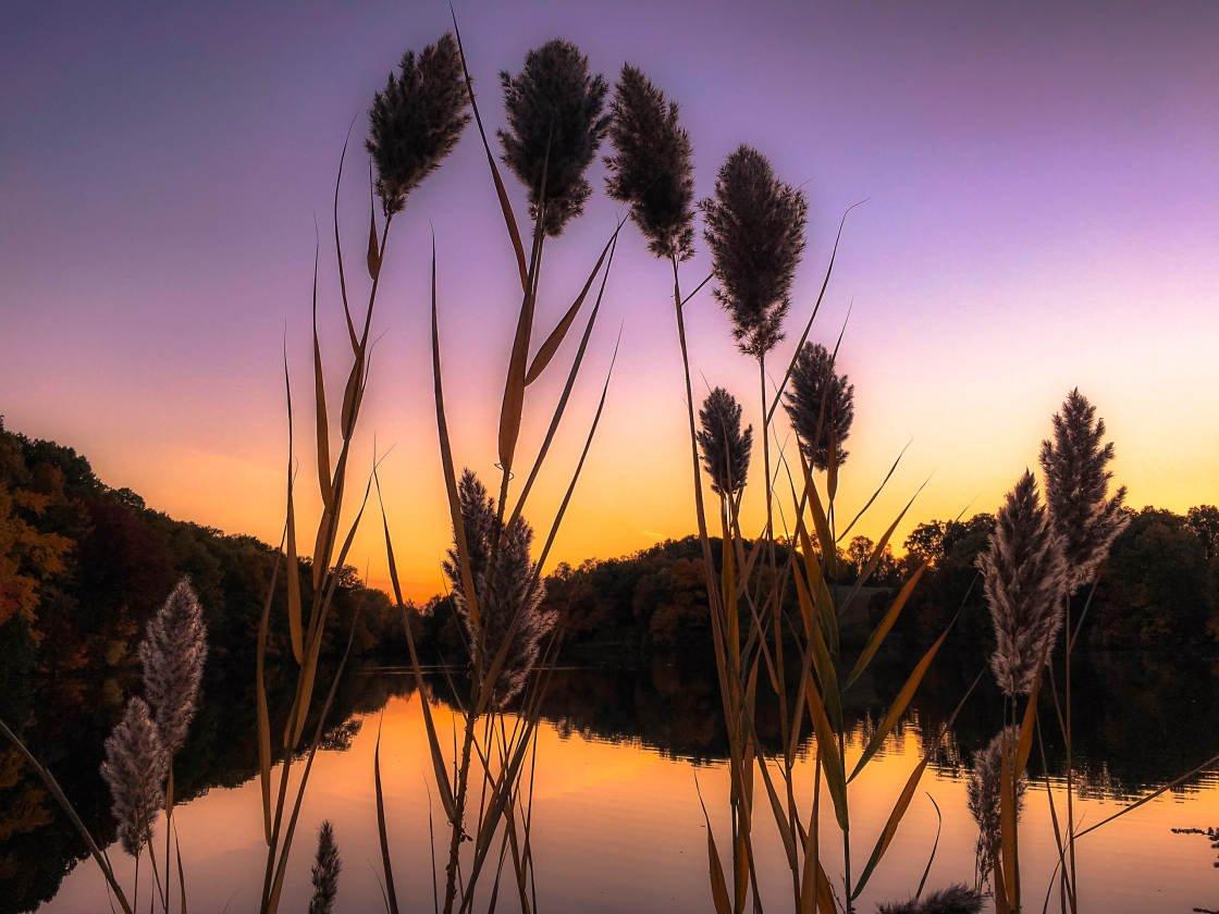 colorful landscape photography no script