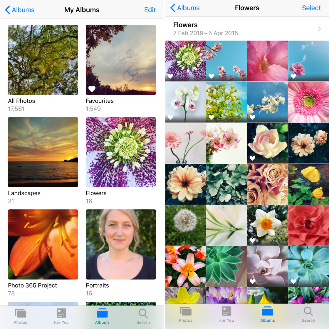 How To Use iPhone Photo Albums To Organize Photos