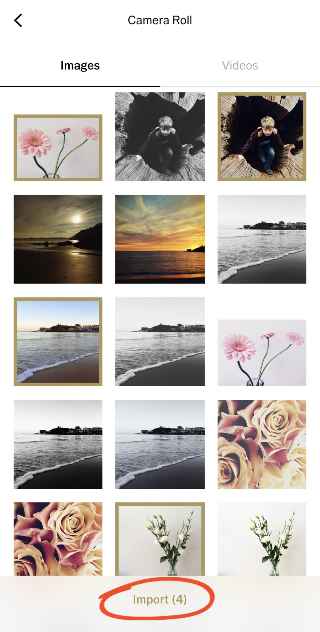 How To Use Vsco Filters To Create Beautiful Iphone Photos