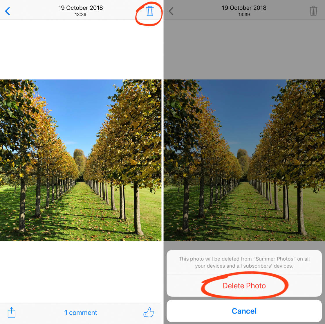 iCloud Photo Sharing: The Complete Guide To Sharing iPhone Photos