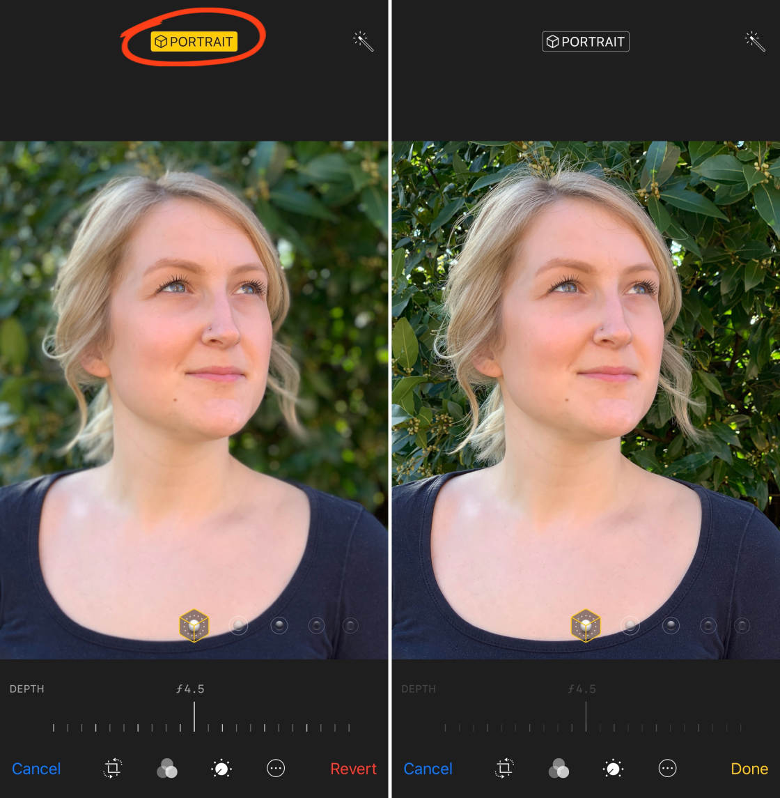 iPhone Camera Features no script
