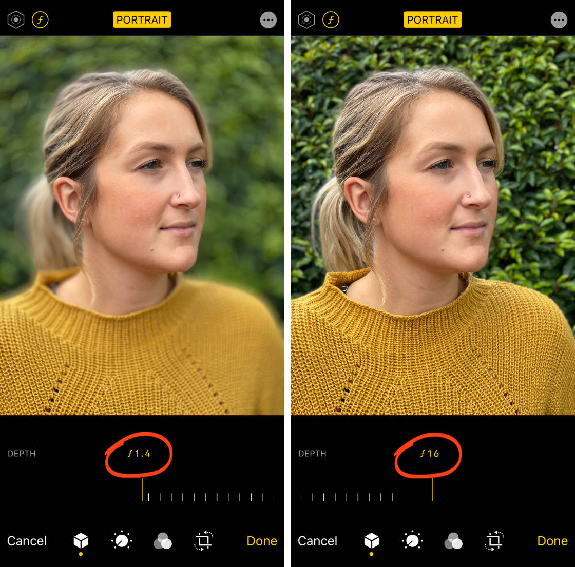 4 Easy Ways To Blur The Background In Your Iphone Photos