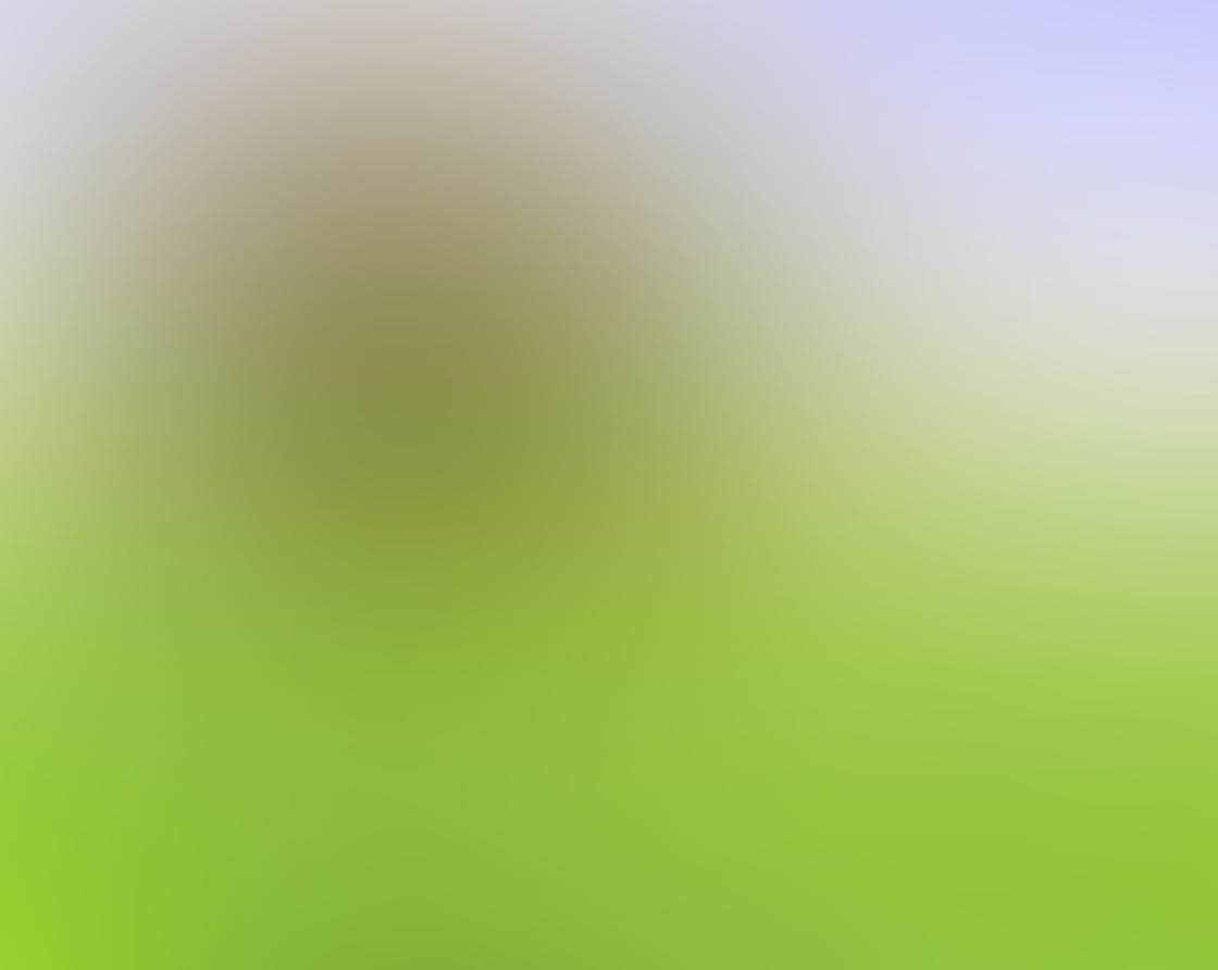 iPhone Tree Photo 20