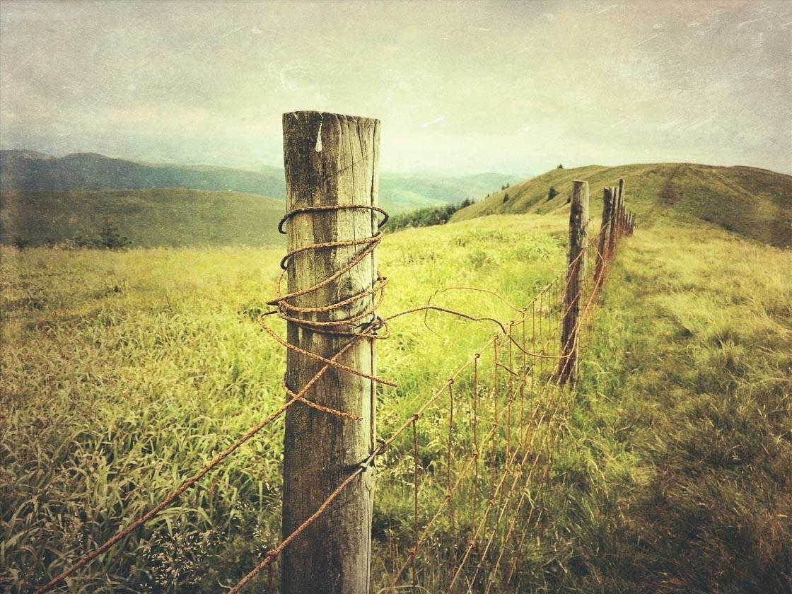 Landscape photography 19 no script