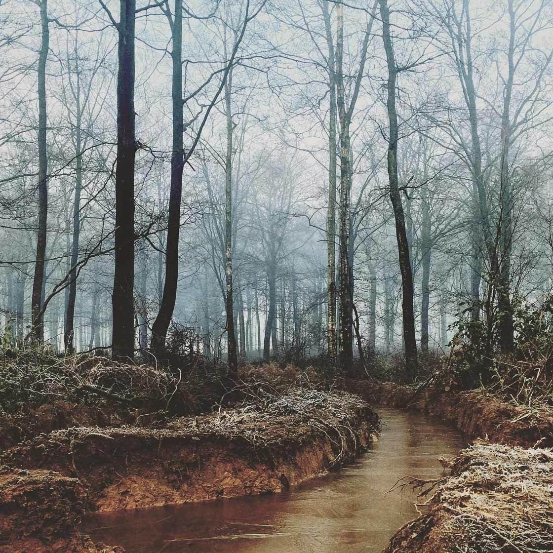 Landscape photography 20 no script