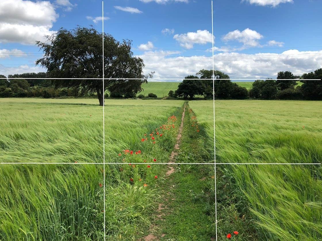 Landscape photography 34 no script