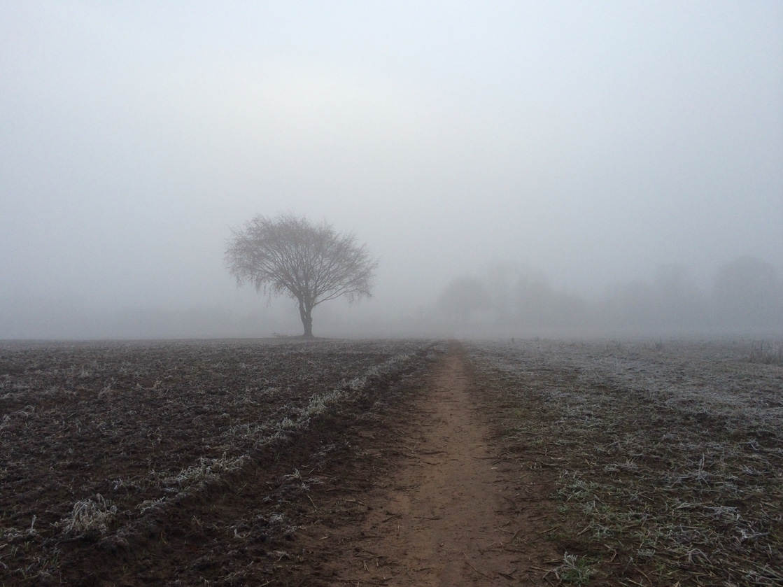 Landscape photography 37 no script