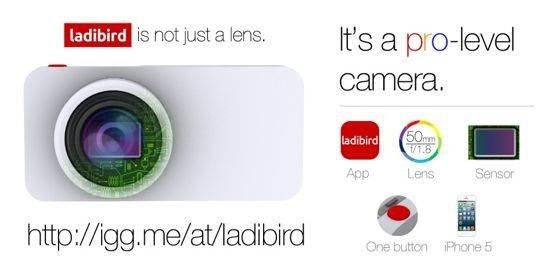 ladibird 2