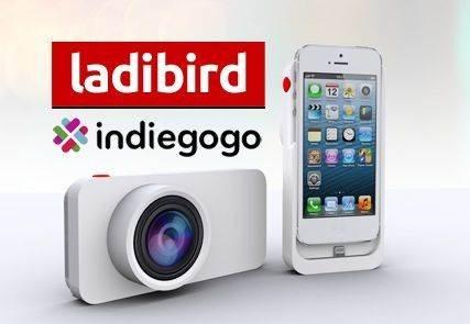 ladibird 3 no script