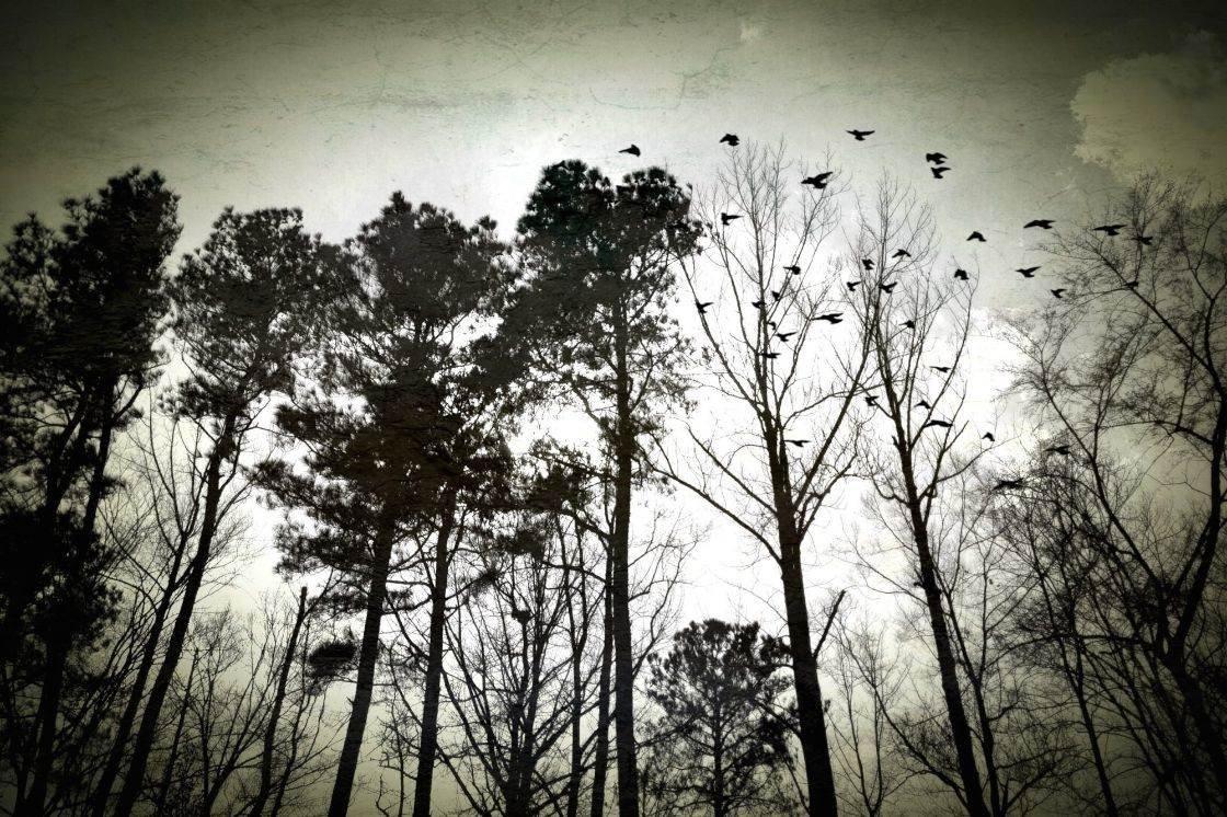 iPhone Sky Photography 8 no script