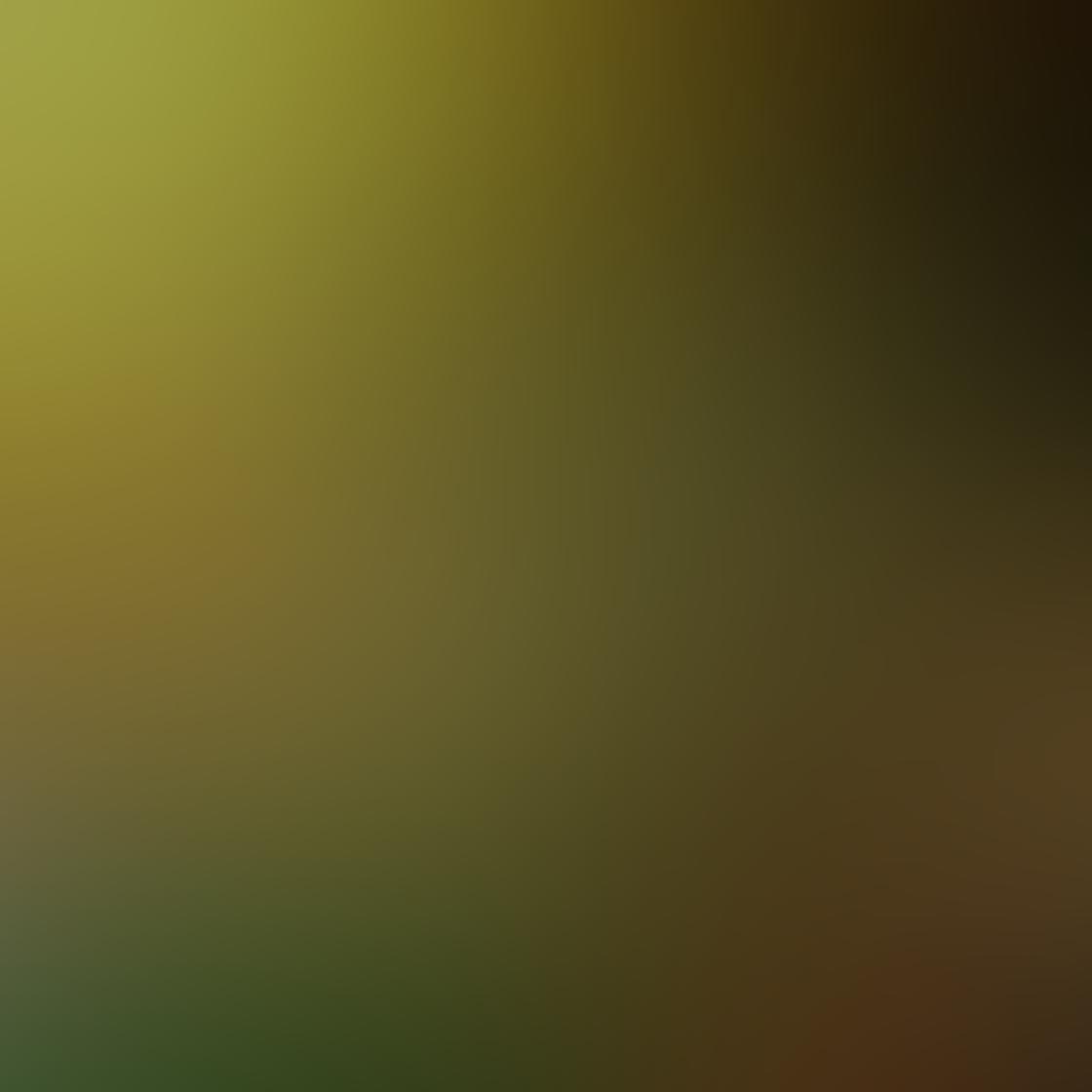 iPhone Photos Low Angle 9