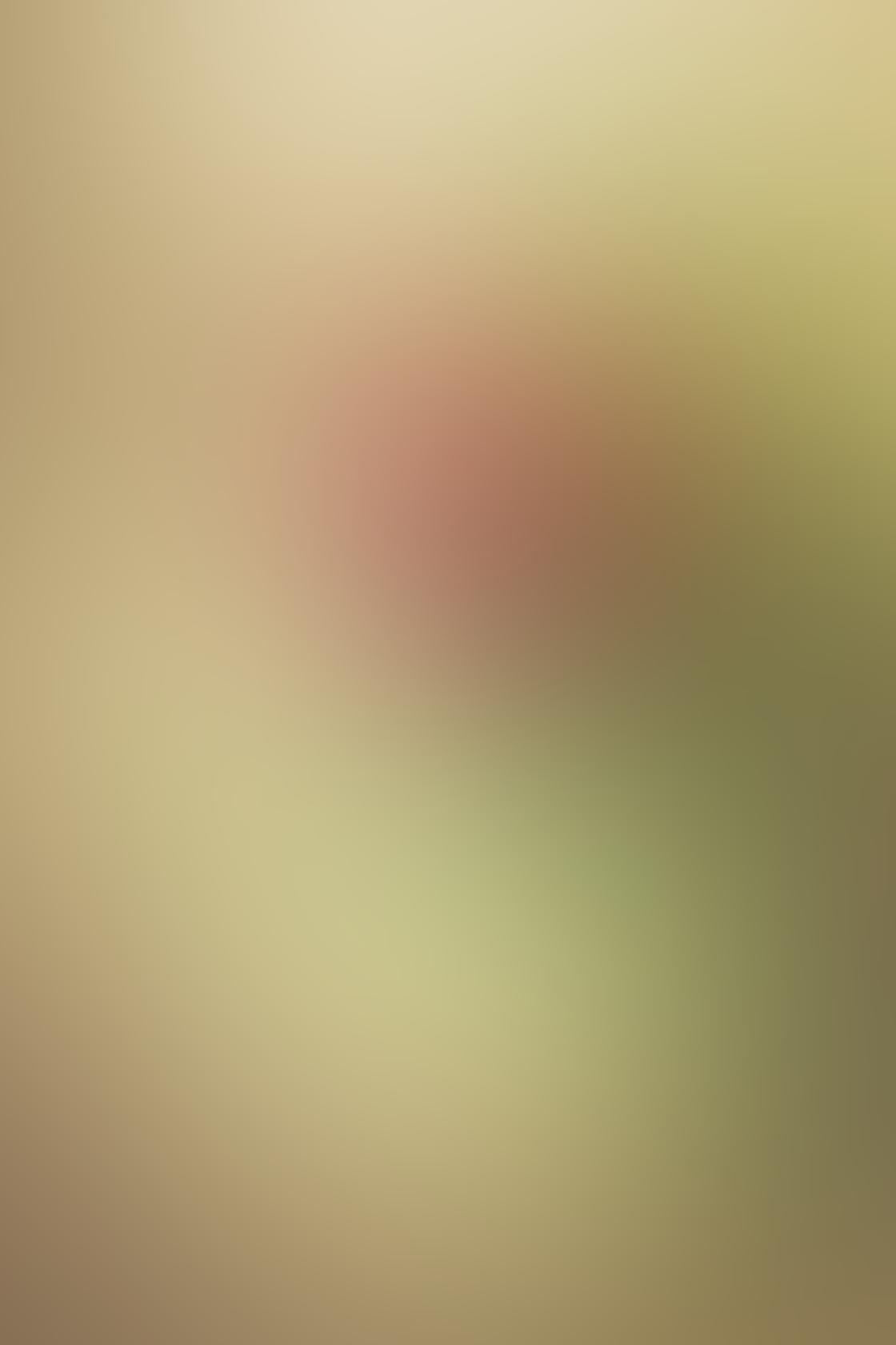 iPhone Photos Low Angle 14