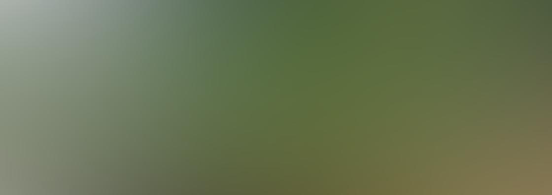 Panoramic iPhone Photos 6