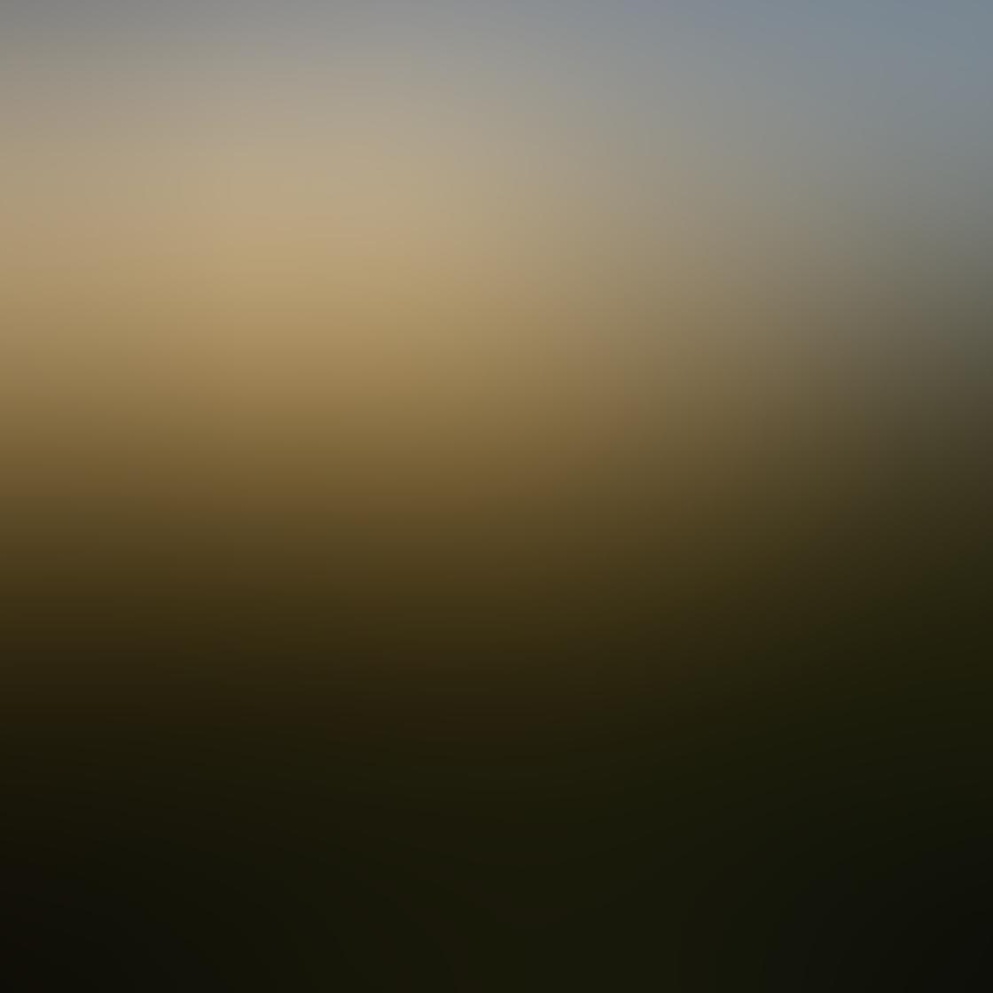Colin Roberts iPhone Photos 3